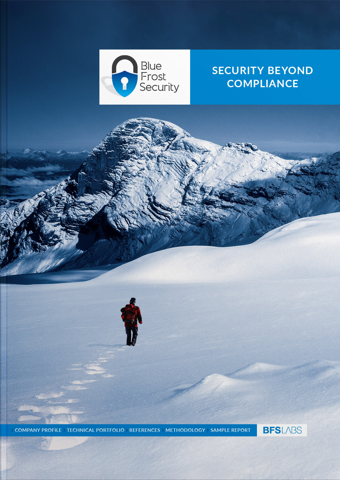 bluefrostsecurity buch cover